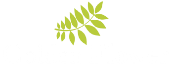 Golden Flower GNA Group